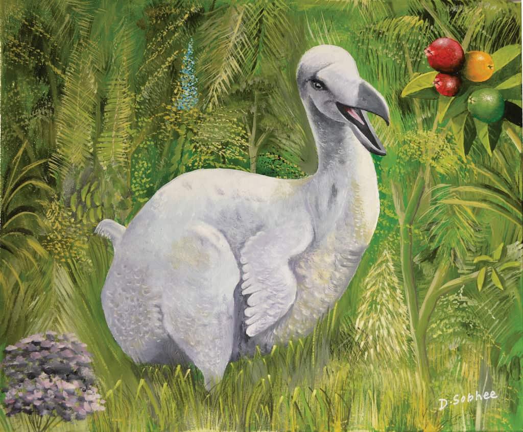 mauritian-artist-dinesh-sobhee-dodo-2