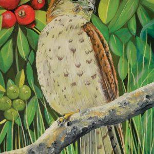 mauritian-artist-dinesh-sobhee-kestrel