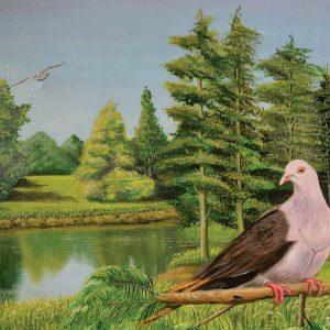 mauritian-artist-dinesh-sobhee-pink-pigeon-2