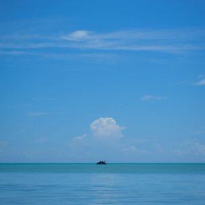 mauritius-arts-catherine-li-bleu-de-toi