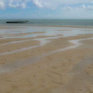 mauritius-arts-catherine-li-maree-basse