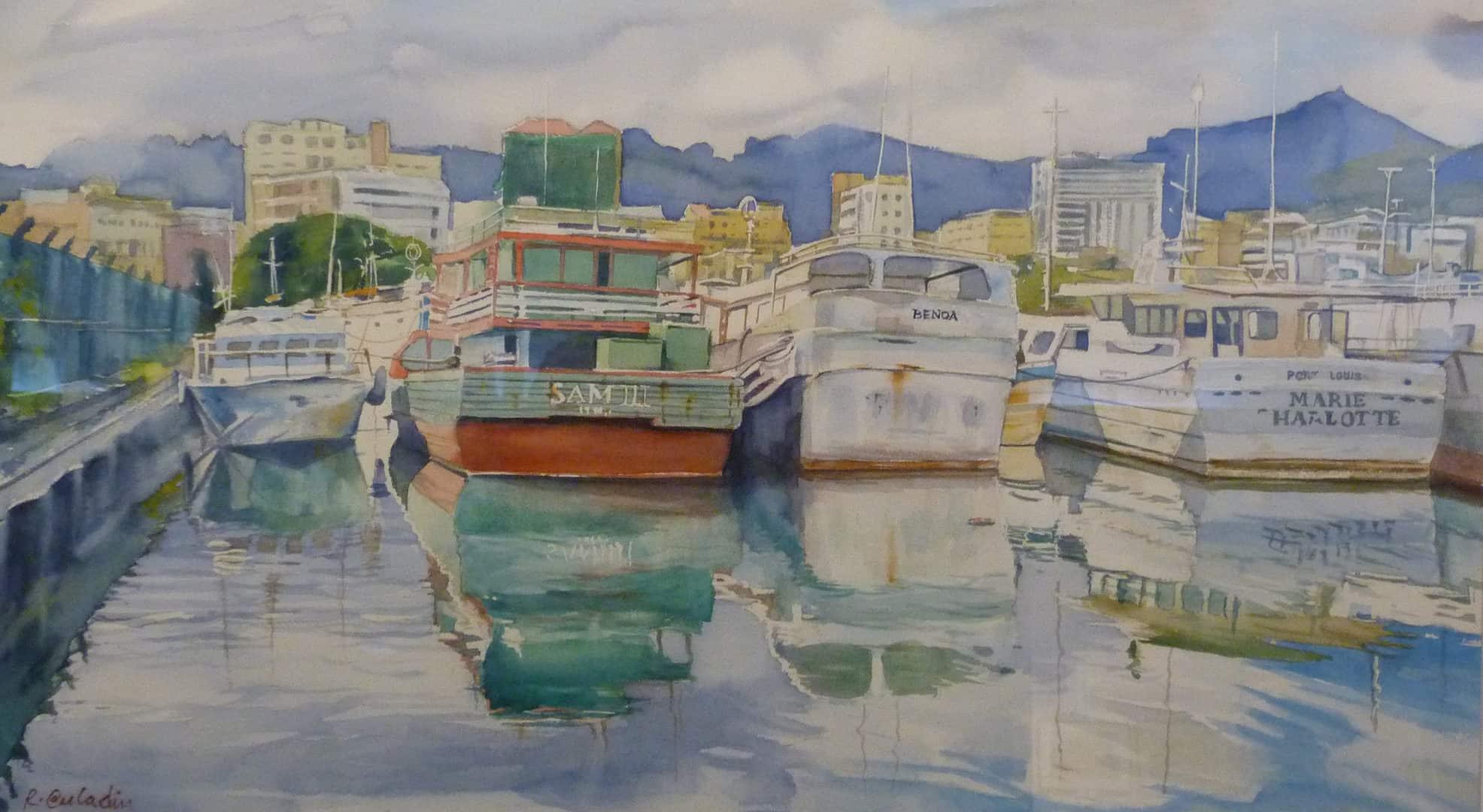 mauritius-painter-trou-fanfaron-riaz-auladin