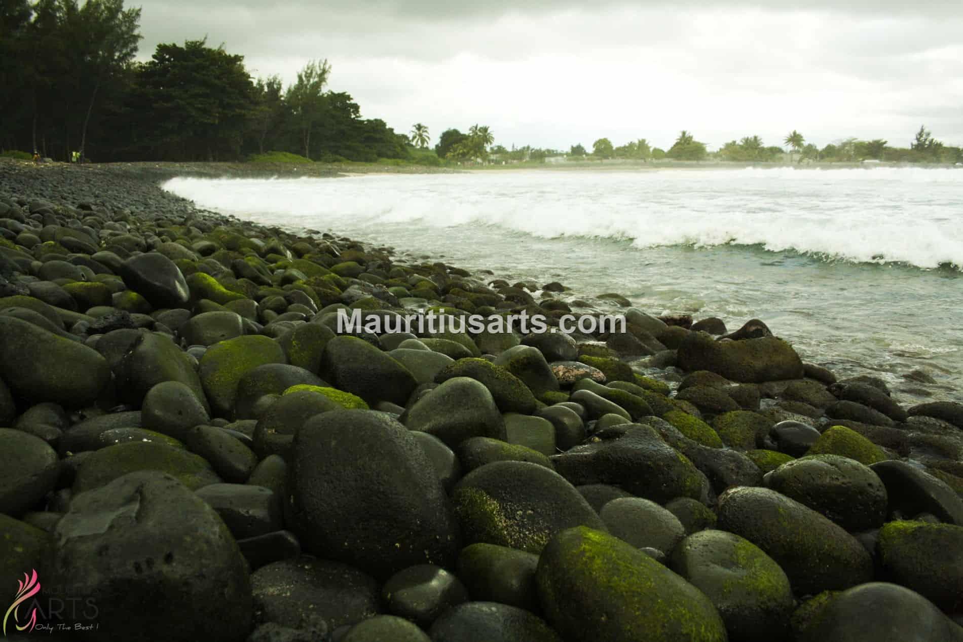 Mauritius Arts & Artists - Shivagaami-Lutchmanen-Ros gale