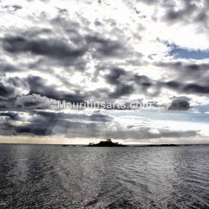 mauritius-arts-djunaid-jeetoo-radiance
