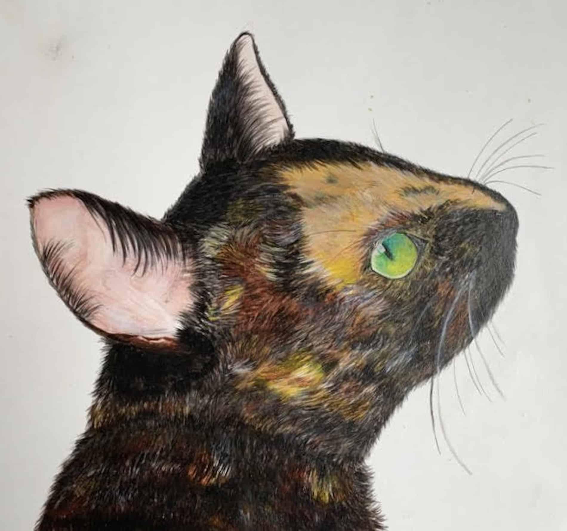 mauritius-arts-priya-jhugroo-cat-painting