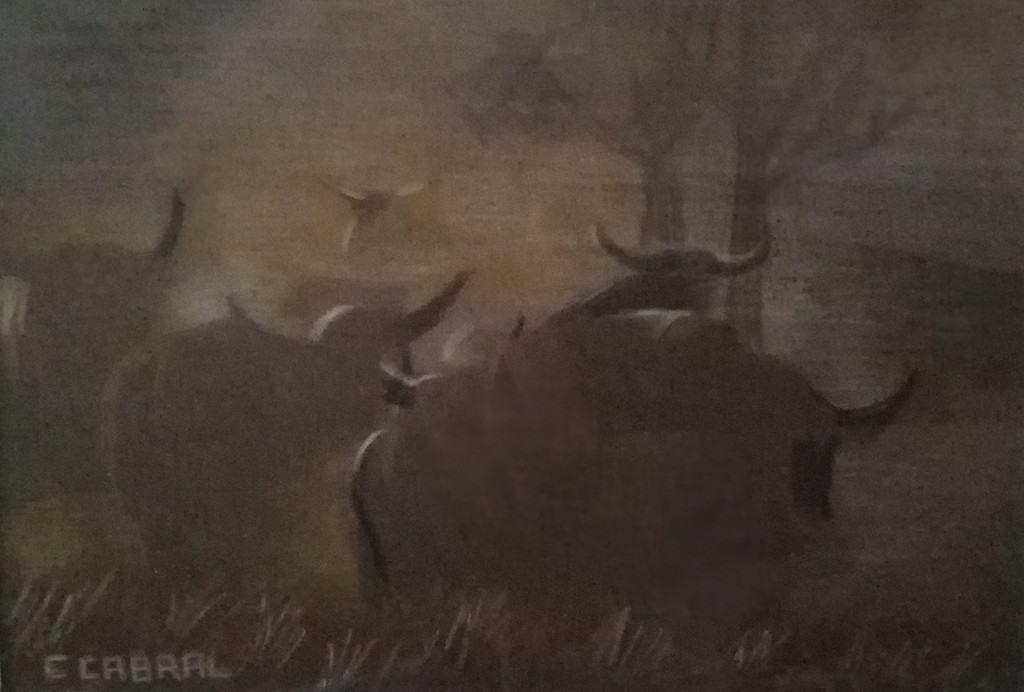 mauritius-arts-carlos-cabral-buffalo-dawn