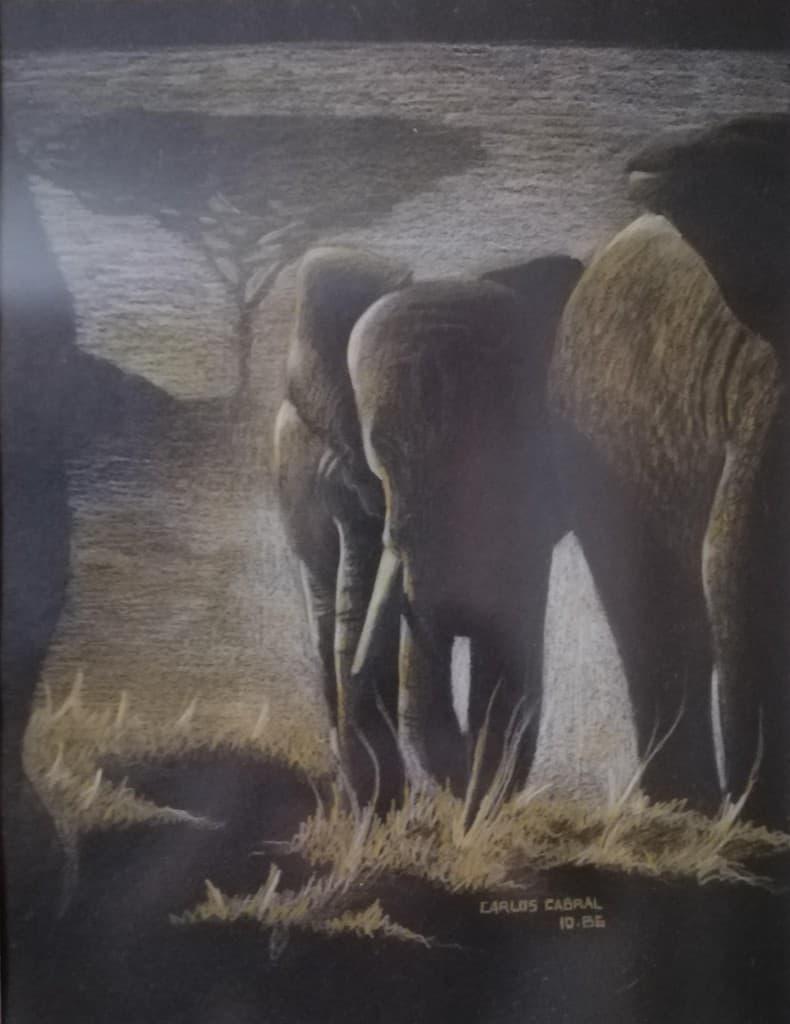 mauritius-arts-carlos-cabral-elephant-dawn