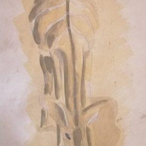 mauritius-arts-carlos-cabral-fudu
