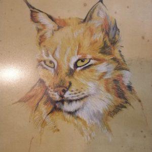 mauritius-arts-carlos-cabral-lynx
